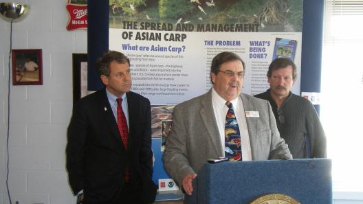 Sen. Brown Calls on Canadian Ambassador to Crack Down on Asian Carp Smuggling