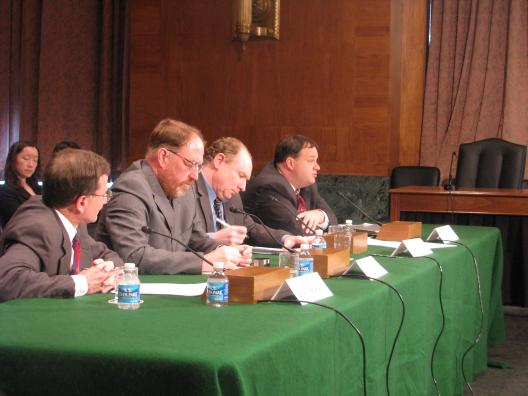 Economic Subcommittee Hearing: Lessons from the New Deal
